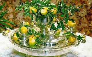 cucina siciliana  dolce  mandarini