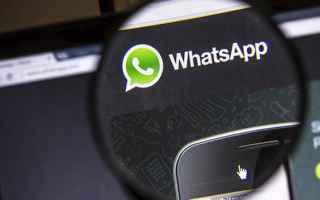 whatsapp  mediaworld  apps  hacker