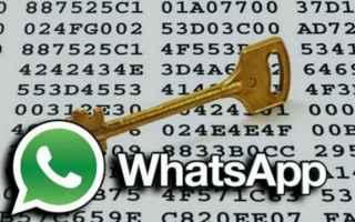 whatsapp  crittografia  backdoor