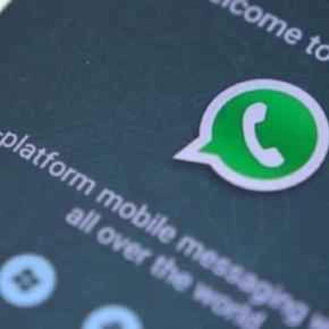 whatsapp  app  smartphone  cellulari