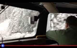 Tecnologie: treni  trasporti  neve  inverno  alberi