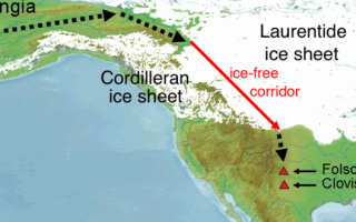 """Science pubblica lo studio """"Early human presence in the Arctic: Evidence from 45,000-year-old mamm"""