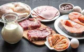 proteine  dieta  eccesso proteine