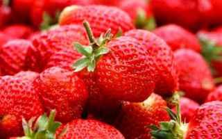 Alimentazione: pesticidi  frutta
