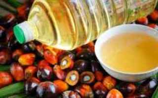 olio di palma  grassi saturi