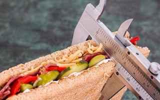 dimagrire  dieta  piano alimentare