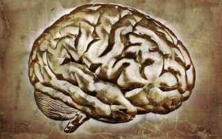 Scienze: zen  meditazione  neuroscienza