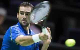 tennis grand slam cilic rotterdam