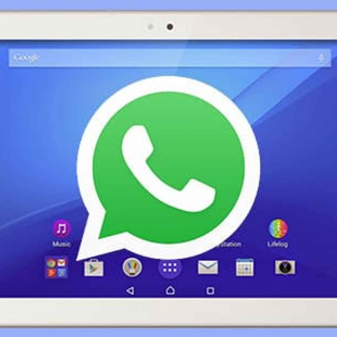 whatsapp  tablet  android