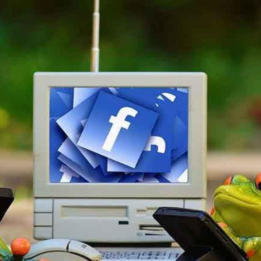 facebook  social network  web