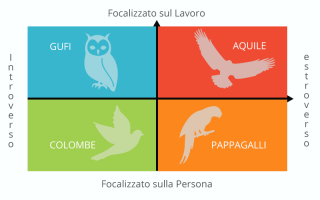 Web Design: personas  web design  siti web
