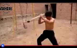 dal Mondo: arti marziali  cina  shaolin