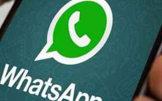 App: whatsapp  layout  chat  business  apps