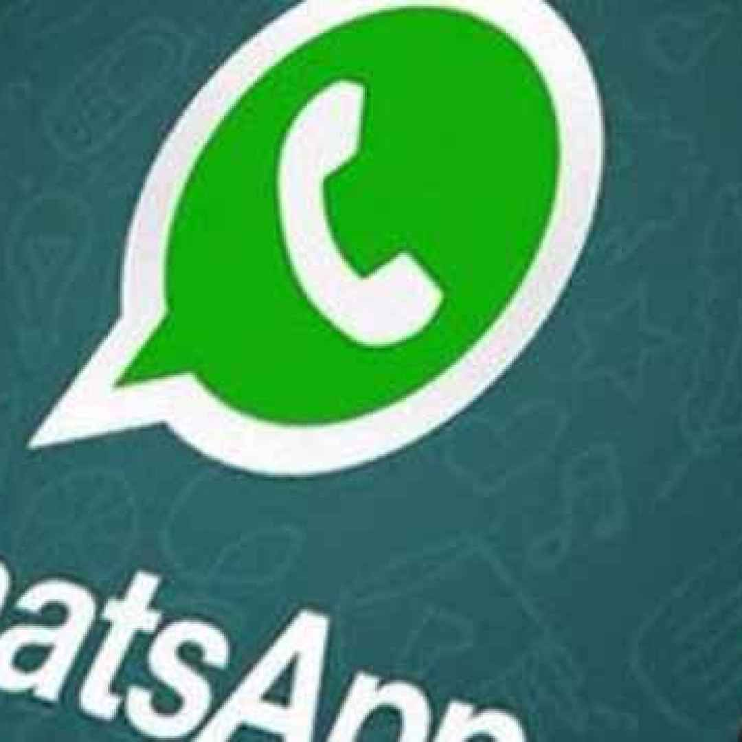 whatsapp  layout  chat  business  apps