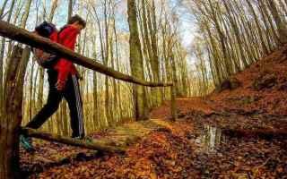 Viaggi: escursioni  primavera  marche