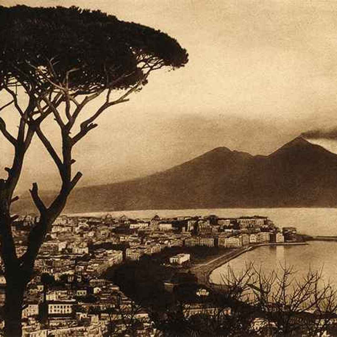 italia  alberi