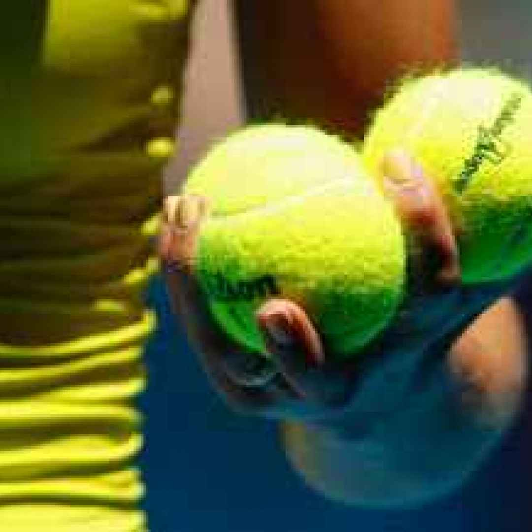 tennis grand slam stefano calzolari