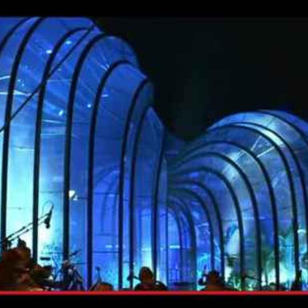 piante  industria  architettura  gin