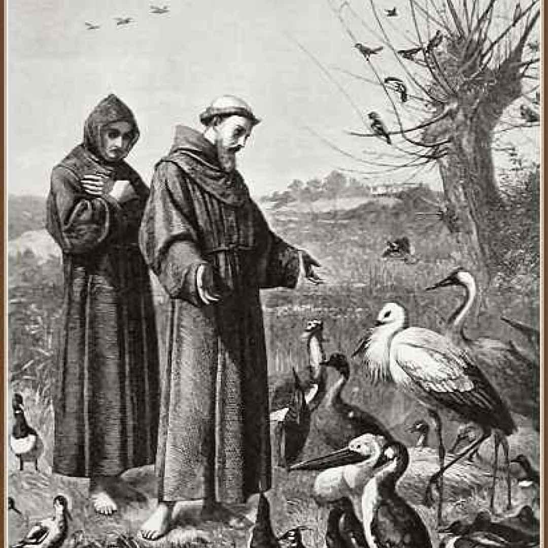 cantico delle creature  letteratura  san francesco  assisi