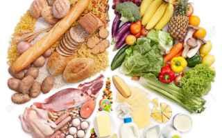 Alimentazione: cibo  alimentazione