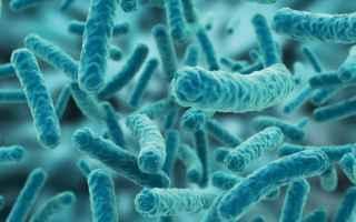 Medicina: fermenti lattici  probiotici  bambini