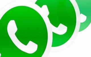 App: whatsapp  apps  beta  android  chat  gif