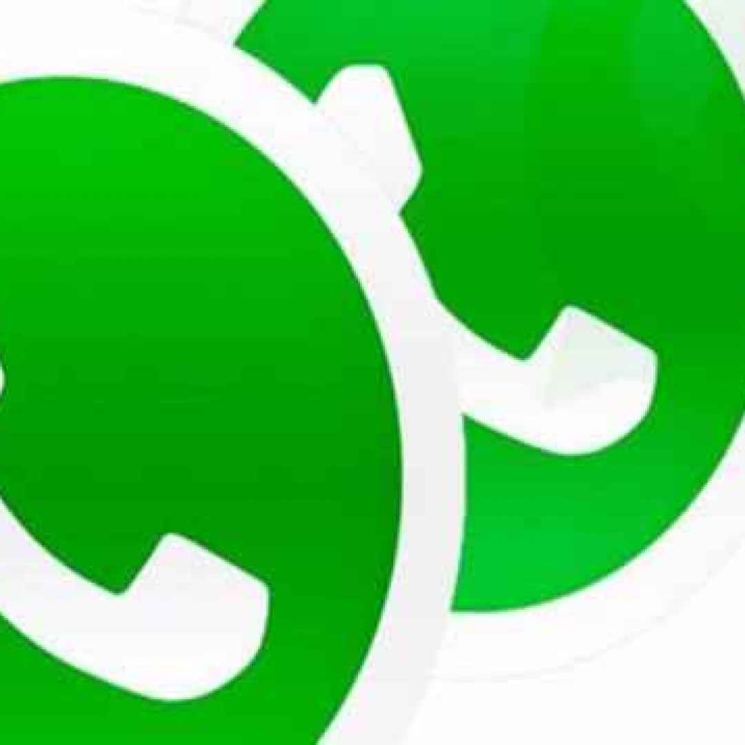 whatsapp  apps  beta  android  chat  gif