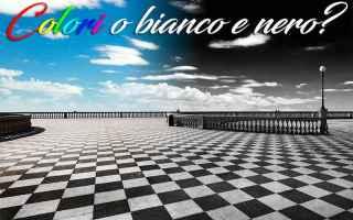 https://diggita.com/modules/auto_thumb/2017/04/14/1590608_bianco-e-nero-2_thumb.jpg