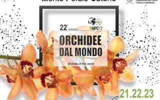 borgo  lazio  viaggi  festa  orchidee