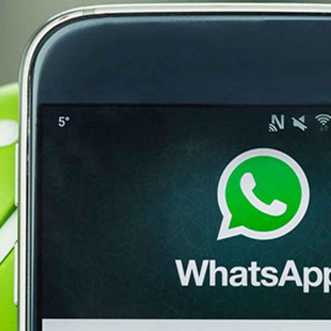 whatsapp  condividere file