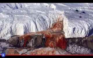 Scienze: scienza  ghiaccio  scoperte  antartide