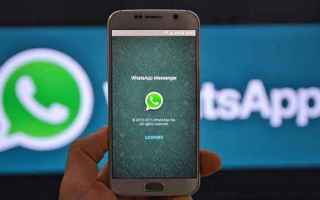 App: whatsapp  apps  layout  android