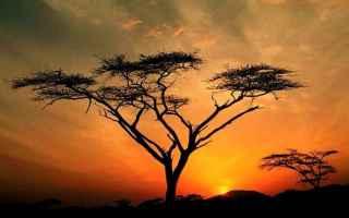 Religione: creazione  dio  dono  luce  tramonti