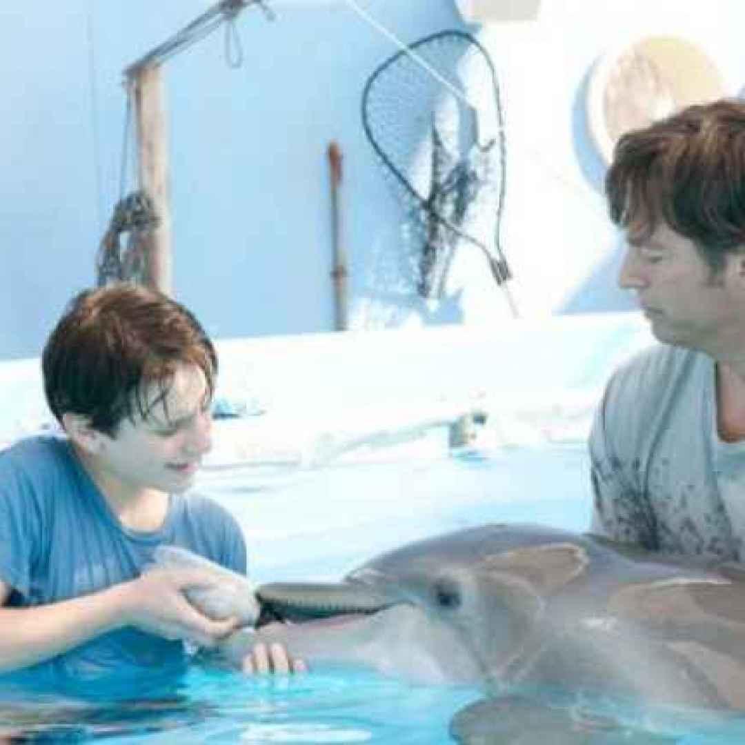 delfino  film