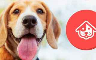 Scienze: android iphone cani dog sitter
