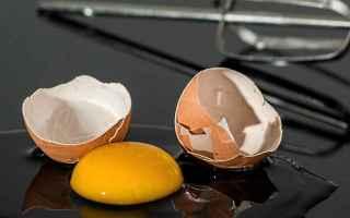 Alimentazione: cucinare  proteine  uova