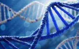 dna  test  geni  invecchiamento  ricerca