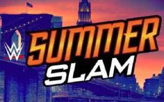 wwe  wrestling  summerslam