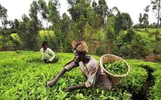 Salute: fame  povertà  donne  oxfam