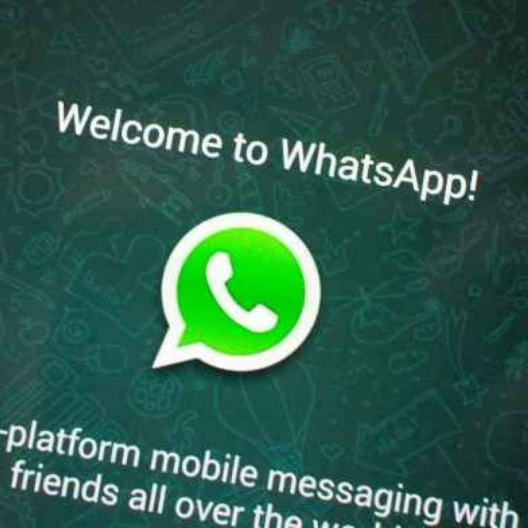 whatsapp  applicazioni android
