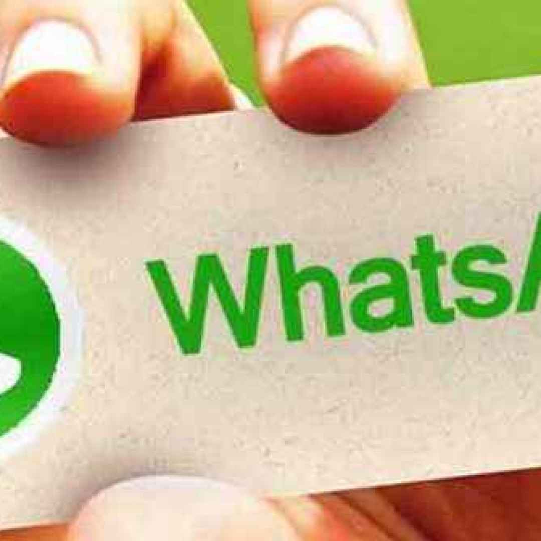 whatsapp  android  iphone  windows phone