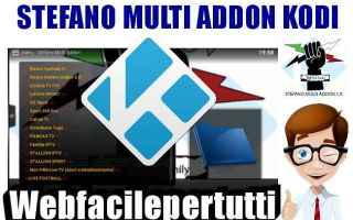 Software Video: kodi stefano multi addons