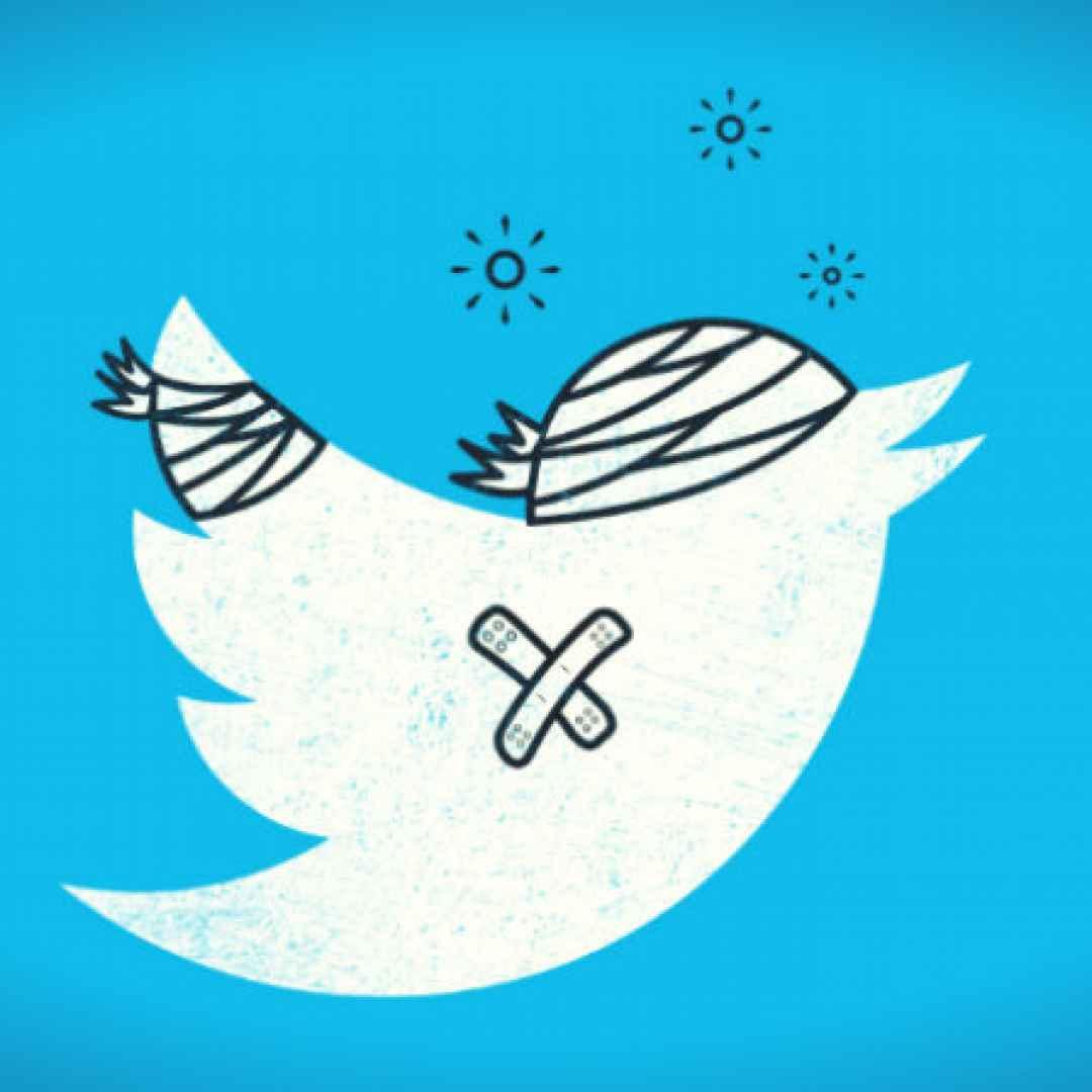 twitter  social  apps  followers