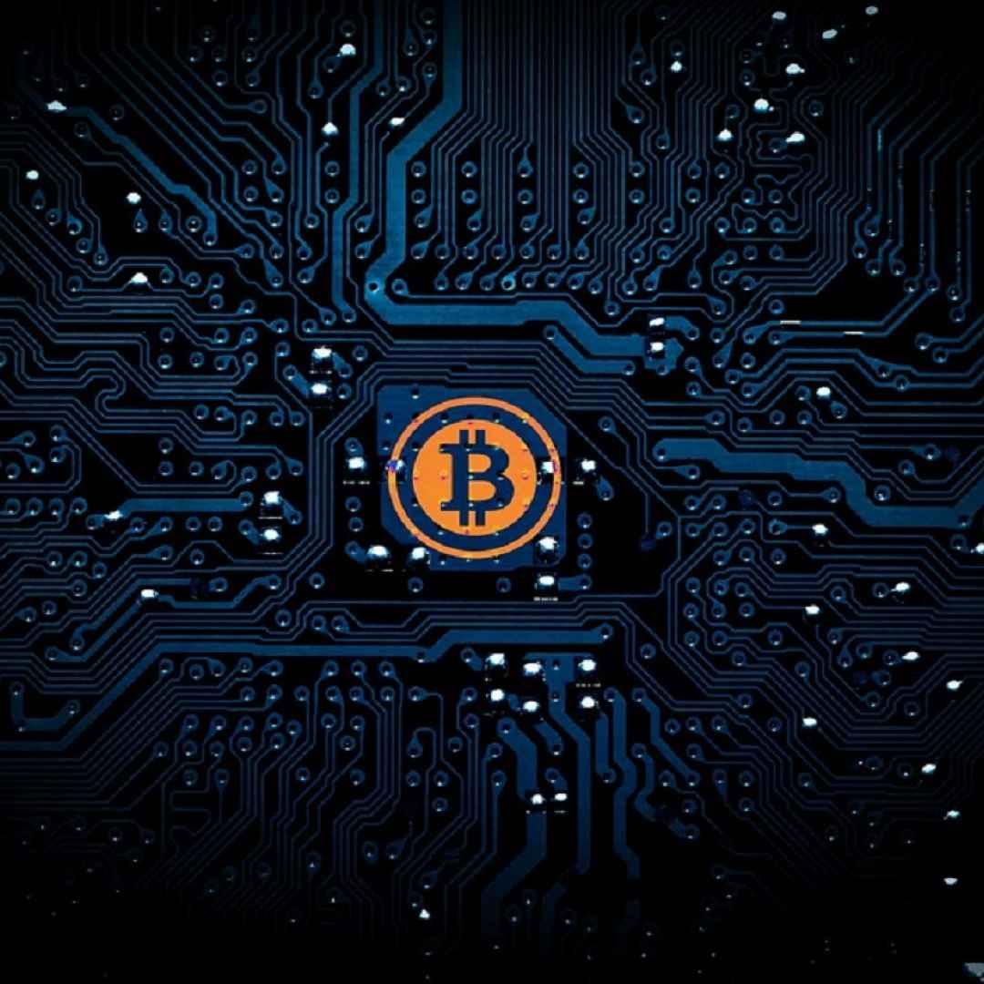 bitcoin cash  criptovaluta