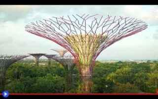 Architettura: singapore  asia  architettura  giardini