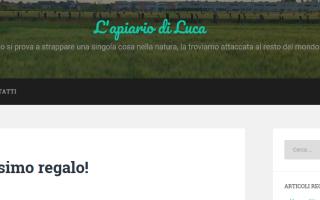 organizer  recensioni  novità  blog
