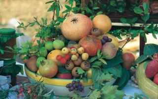 casola valsenio  frutti dimenticati