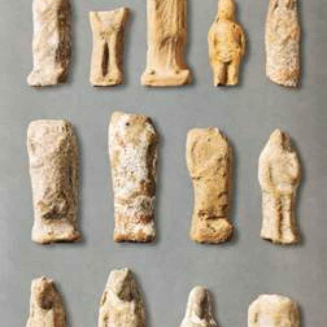 castelfranco emilia  archeologia  mostra