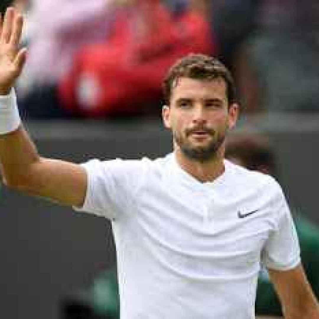 tennis grand slam dimitrov del potro