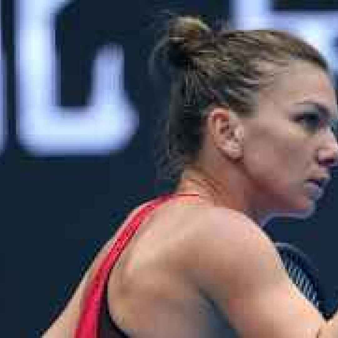 tennis grand slam halep sharapova pechin
